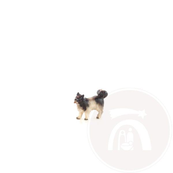 Hond (795156)