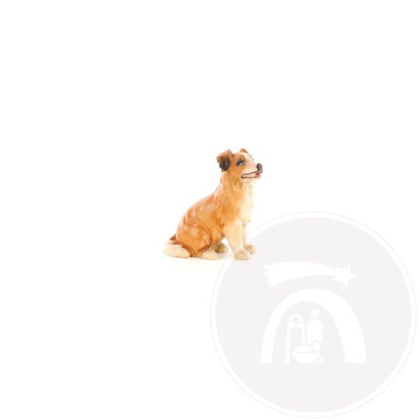 Hond (4585)